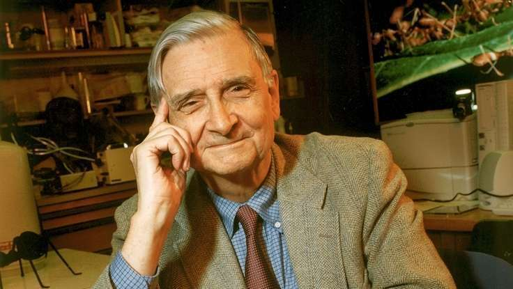 Our Inner Struggle Defines Us As Humans: Edward O. Wilson On Morality